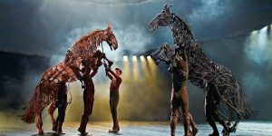 Image for 'War Horse'